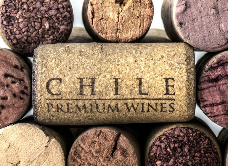 Chili Voyage Vallée culture viticole