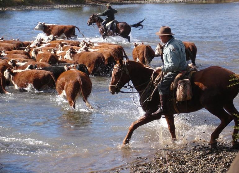 Argentine Voyage Patagonie Huechahue Ranch travail de gauchos