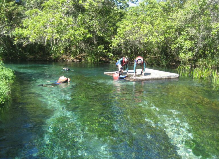 Brésil Voyage Bonito snorkelling