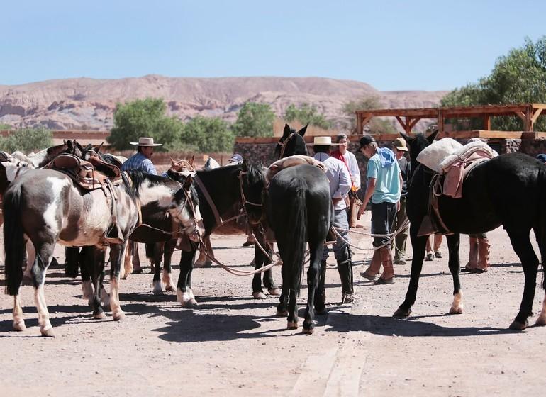 Chili Voyage Los Cumbres Atacama excursion à cheval