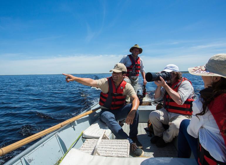 Argentine Voyage Esteros del Ibera Puerto Valle excursion observation d'animaux