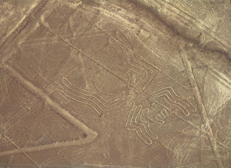 Pérou voyage lignes de Nazca