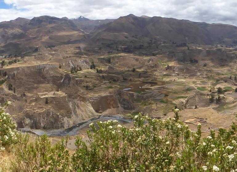 Trek du Canyon du Colca