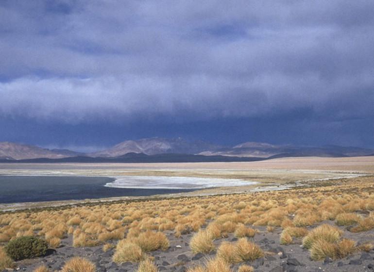 Chili Voyage Awasi Atacama excursion Laguna Miscanti