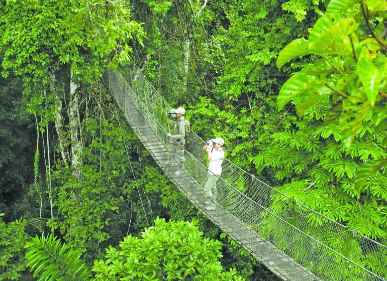 Pérou Voyage Amazonie Sud Rio Madre de Dios pont suspendu