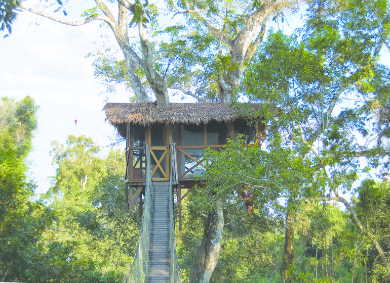 Pérou Voyage Amazonie Sud Rio Madre de Dios tower house