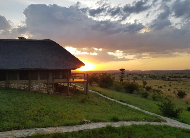 safari tanzanie mara