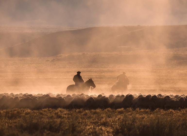 Argentine Voyage Patagonie scène de gauchos