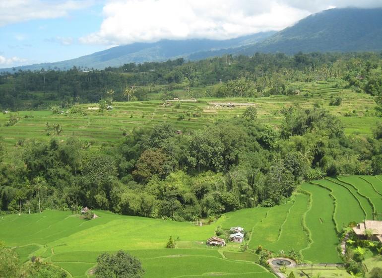 Bali pour petits et grands