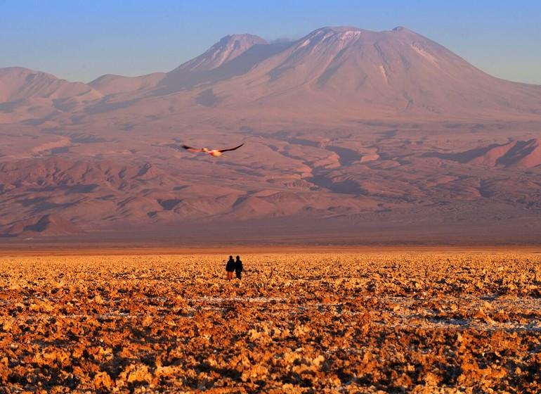 Chili Voyage Explora Atacama randonnée