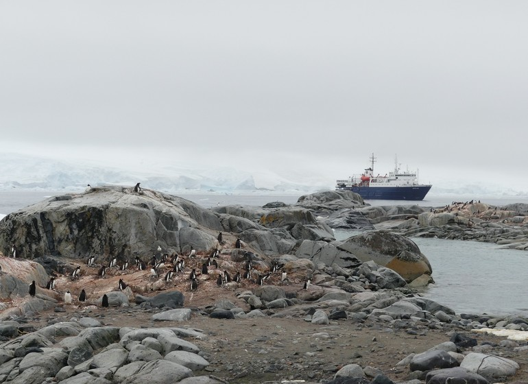La péninsule Antarctique.