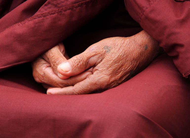 Spécial Jambay Lhakhang Singe Cham