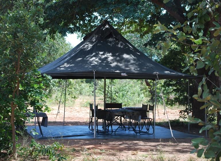 safari botswana
