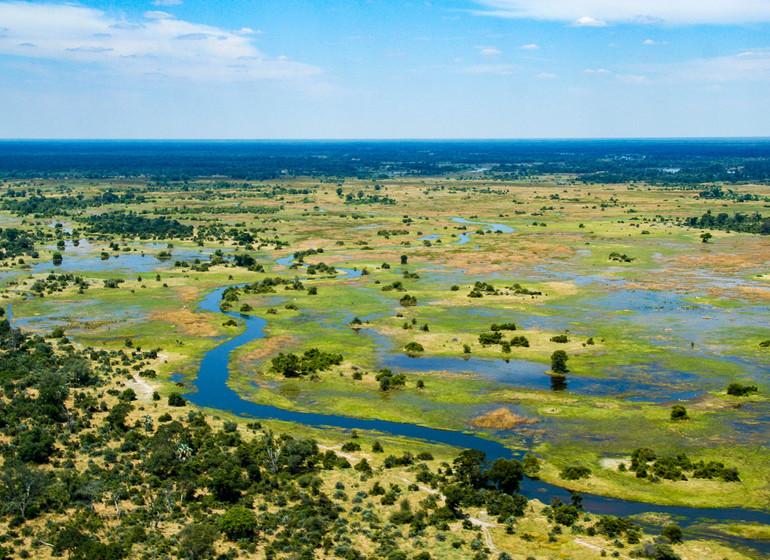 safari botswana delta okavango