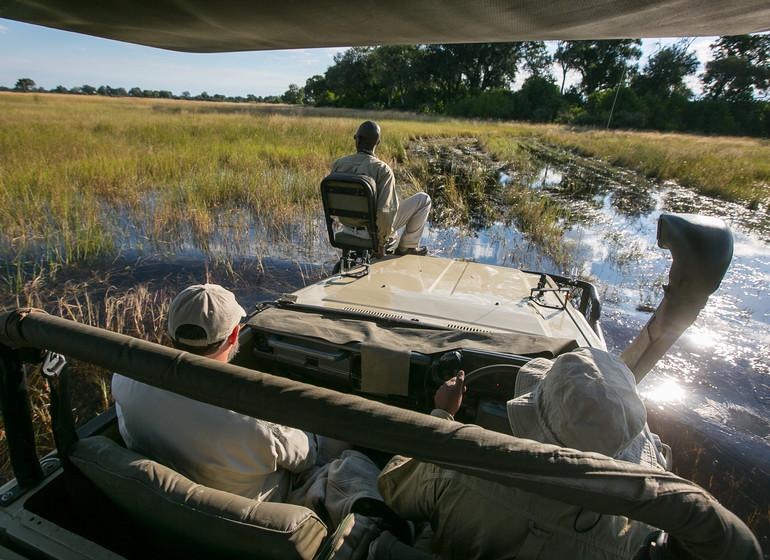 safari botswana okavango