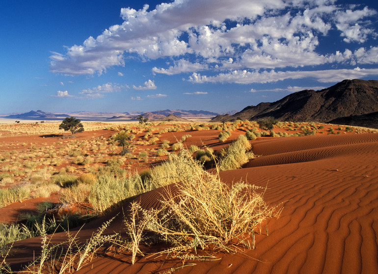 voyage namibie namibrand