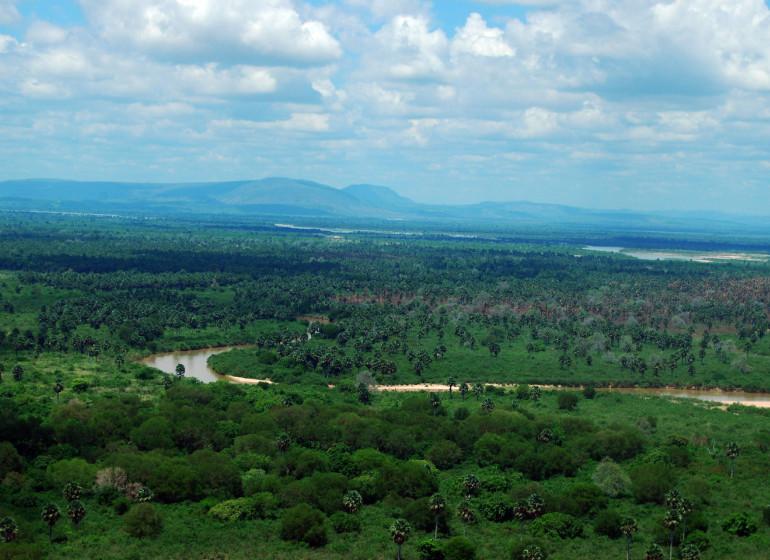 safari tanzanie ruaha