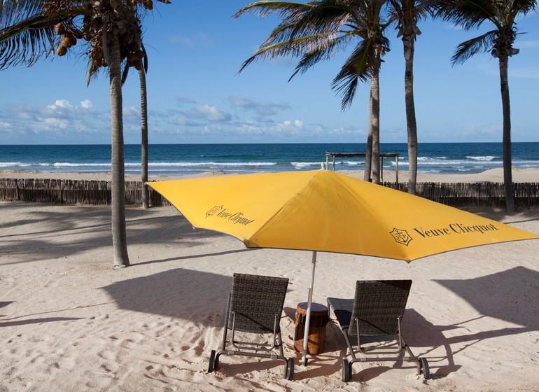 Brésil Voyage Zorah Beach plage et cocotiers