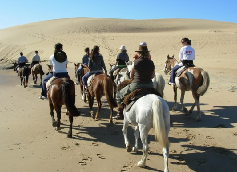 Uruguay Voyage Rocha Valizas excursion équestre dans les dunes