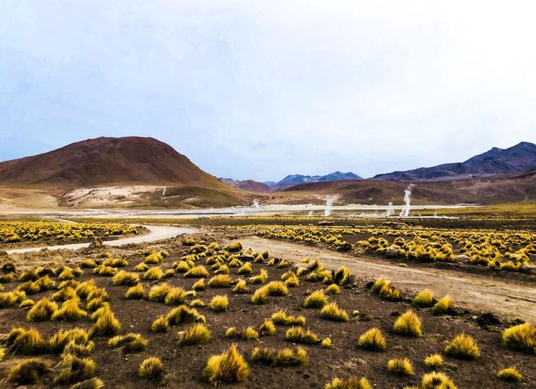 Chili Voyage Atacama Geysers du Tatio
