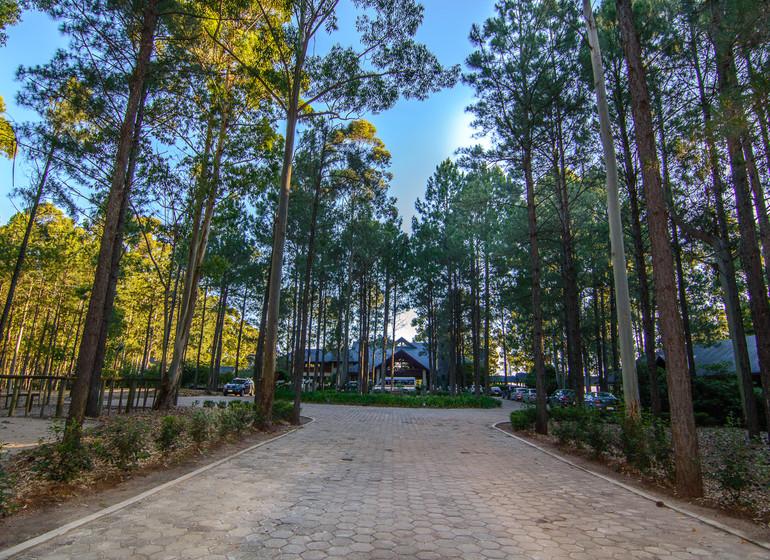 Uruguay Voyage Carmelo Resort chemin d'accès