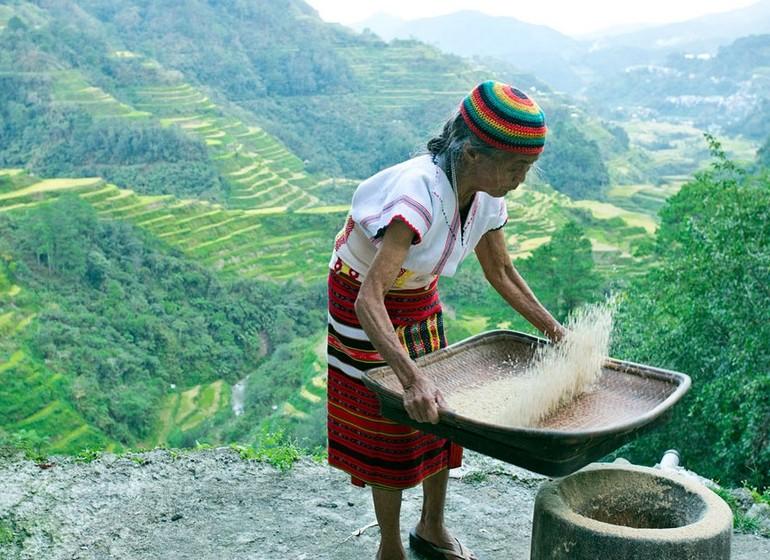 voyage asie philippines rencontre ethnie Luzon riziere ifuago