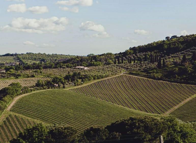 I pini, voyage en Toscane