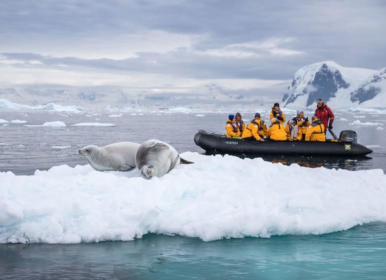 Géorgie du Sud et péninsule Antarctique