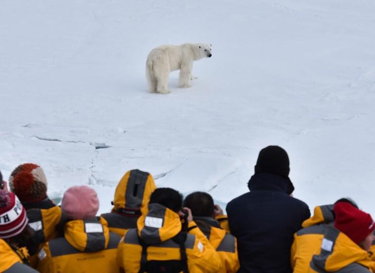 Objectif Pôle Nord : l'aventure ultime !